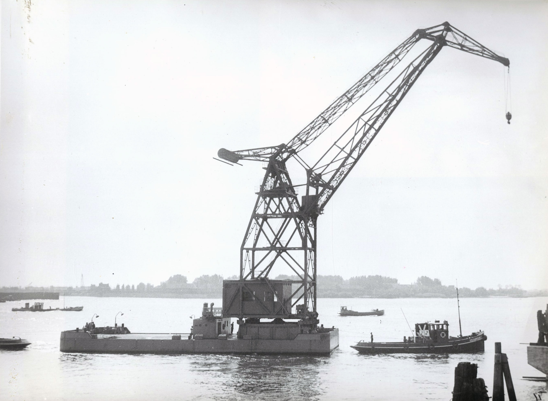 Bnr. 40 Drenova (1953) (Co. 1008)