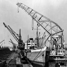 Drijvendekraan 1 (Grote Gust II) 1950+